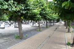 Sint-Truiden-240-Kerkhof-van-Sint-Jacobus