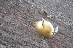 Sint-Truiden-290-Vogels-op-gouden-bol-in-muur-van-Minderbroedersklooster