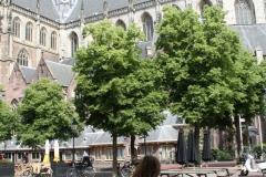 Haarlem-Op-de-fiets-langs-de-St-Bavokerk