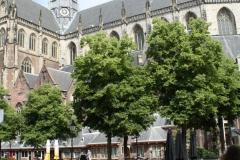 Haarlem-St-Bavokerk-1