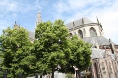 Haarlem-St-Bavokerk