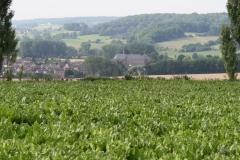 Wittem-Vergezicht-met-klooster-6