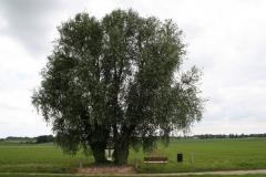Reijmerstok-Wegkruis-4