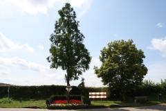 Sint-Geertruid-Wegkruis-1