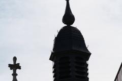 Sint-Truiden-140-Toren-Abdijkerk