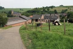 Eys-Vergezicht-met-Sint-Agathakerk-10
